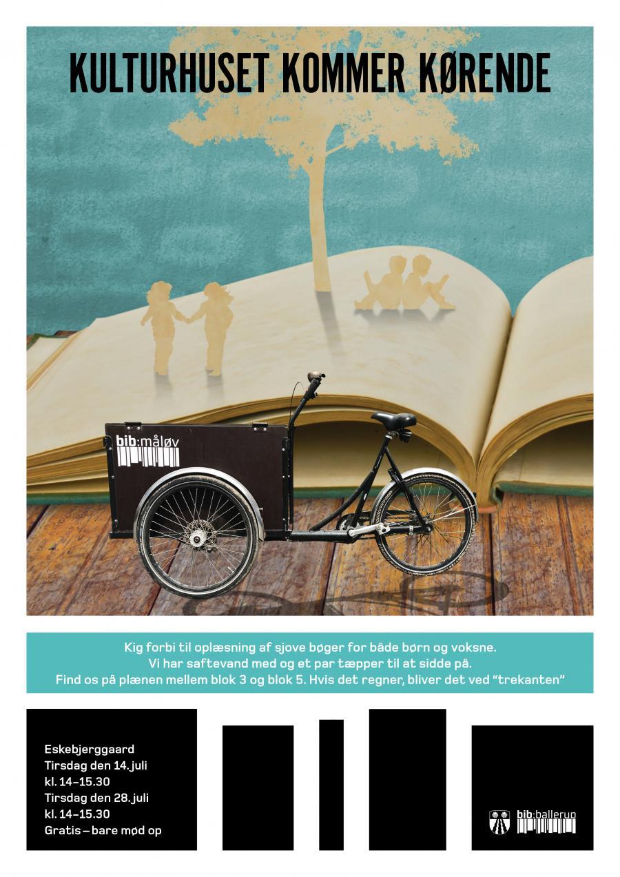 Ladcykel i bog